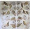 Bangita levél lenyomatos kendő, kicsi, ecoprint