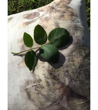 Rózsa levél nyomatos díszpárna, ecoprint